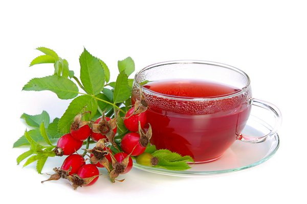 rose hip tea2