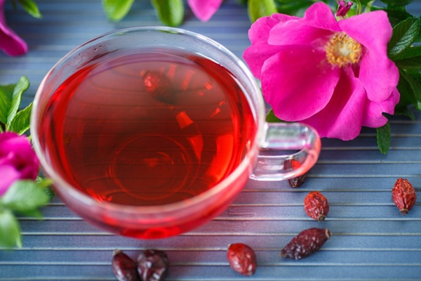 rose hip tea4