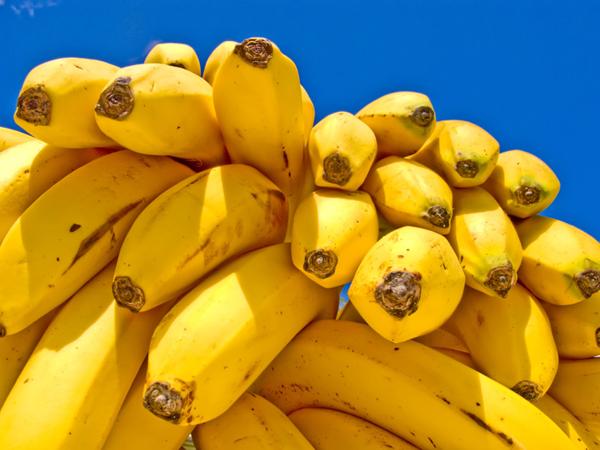 soy milk banana diet12