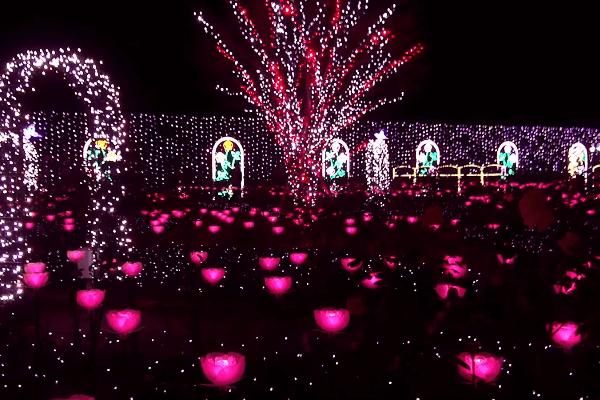 ashikaga-flower-park2