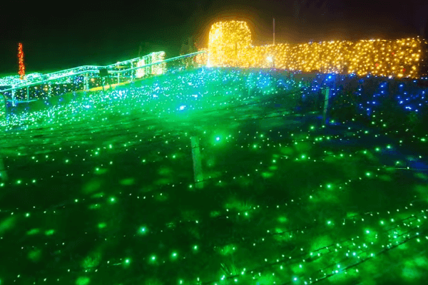 gunma-flowerpark9