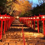 貴船神社の紅葉2017の見ごろ時期・ライトアップや穴場情報まとめ
