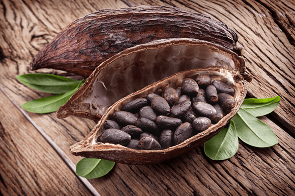 cacao-706