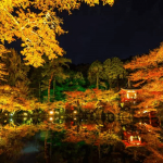 醍醐寺の紅葉2018年の見ごろ時期・ライトアップや穴場情報まとめ