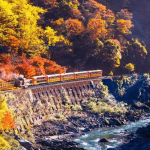 嵯峨野トロッコ列車の紅葉2017の見ごろ時期・ライトアップや穴場情報まとめ