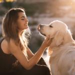【夢占い】犬が出てくる夢には男性が関係している!9つの意味や解釈